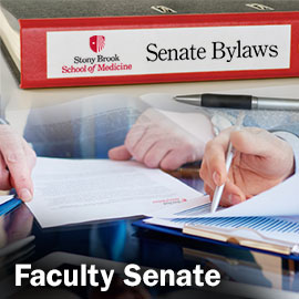 Faculty Senate Button